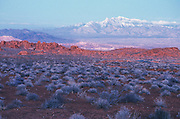 scenic photo of desert with mountain range