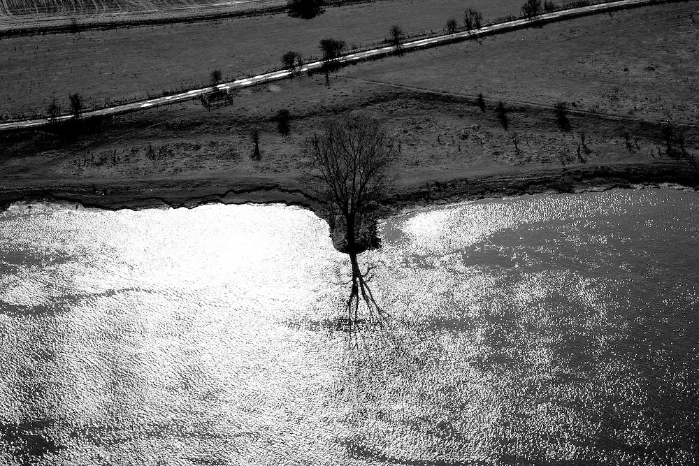 Nederland, Noord-Brabant, Den Bosch, 07-03-2010 ; .Maas, Maasoever met boom op krib, omgeving Oud Empel, bomen in de uiterwaarden..River Meuse with tree on groyne and trees in the floodplain.luchtfoto (toeslag), aerial photo (additional fee required).foto/photo Siebe Swart