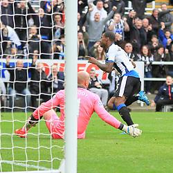 Newcastle v Norwich   Premier League   18 October 2015