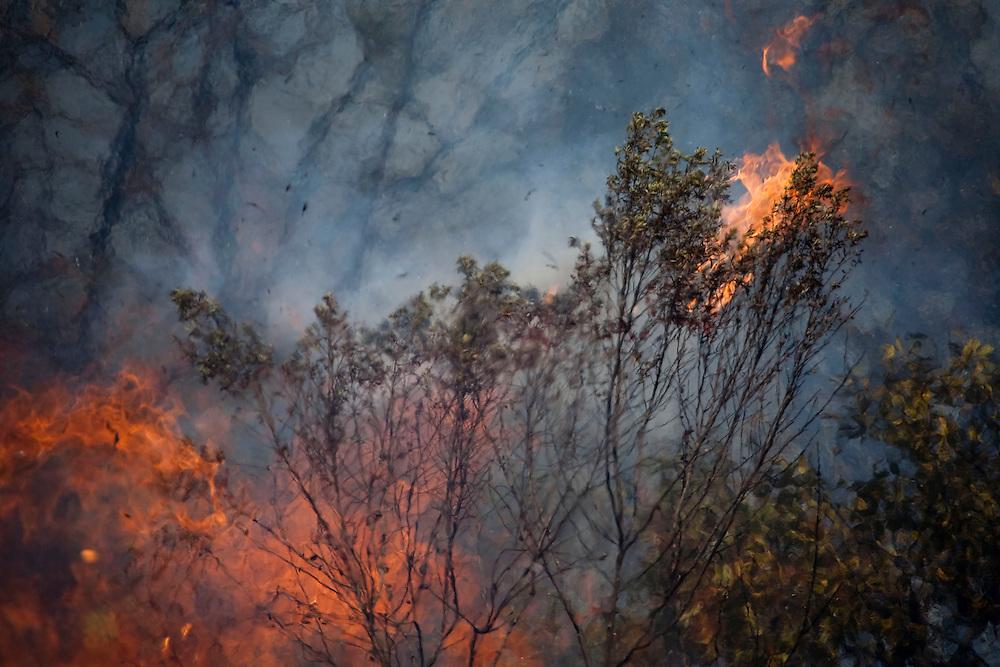 Nova Lima _ MG, 11 de Setembro de 2008<br /> <br /> Incendio no Parque Estadual do Rola Moça.<br /> <br /> <br /> Foto: JOAO MARCOS ROSA / AGENCIA NITRO