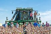 Cotton Farm Tour Day 2