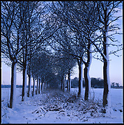 Occold, Winter, 2009