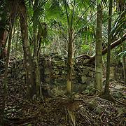 Paquerau, Hope, Misgunst ruins