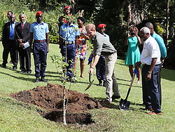 RETRANSMITTED CORRECTING DATE Prince Harry plants a commemorative Baobab tree to mark his visit to the Botanic Gardens in Kingstown, Saint Vincent and the Grenadines, during the second leg of his Caribbean tour.