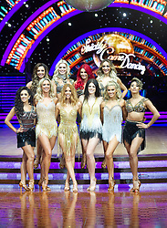 Stacey Dooley, Ashley Roberts, Lauren Steadman, Faye Tozer,  Janette Manrara, Dianne Buswell, Karen Clifton, Nadiya Bychkova, Luba Mushtuk and Amy Dowden attend the photocall for the 'Strictly Come Dancing' live tour at Arena Birmingham on 17 January 2019 in Birmingham, England. Picture date: Thursday 17 January, 2019. Photo credit: Katja Ogrin/ EMPICS Entertainment.