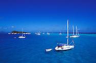 Sail boats, Tobago Cays, The Grenadines, Caribbean