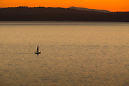 Sailboats on Bellingham Bay, Bellingham, Washington, September 9, 2014.