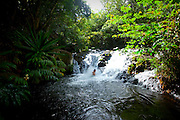 Ginger Pools, Kalalau Valley Stream, Napali Coast, Kauai, Hawaii
