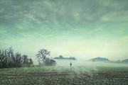 Man walking over a misty field