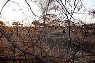 A boy searches for fire wood in Abyei.