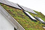 Nederland, Nijmegen, 1-7-2017Een vrijstaande woning met een groen sedumdak. Ook liggen er zonnepanelen en een warmwaterpaneel op het dak. Het huis is dus zeer duurzaam, energieneutraal,milieuvriendelijk,duurzaam, gebouwd.