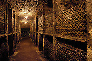 Aged wine in bottles at R. Lopez Heredia winery, Haro. The aging cellars are not dusted and the older sections have a tremendous buildup of mold, dust, and cobwebs that give the cellars the look of a horror movie set.  La Rioja, Spain.