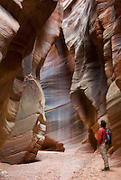 Hiker in Buckskin Gulch Paria Canyon-Vermilion Cliffs Wilderness Arizona