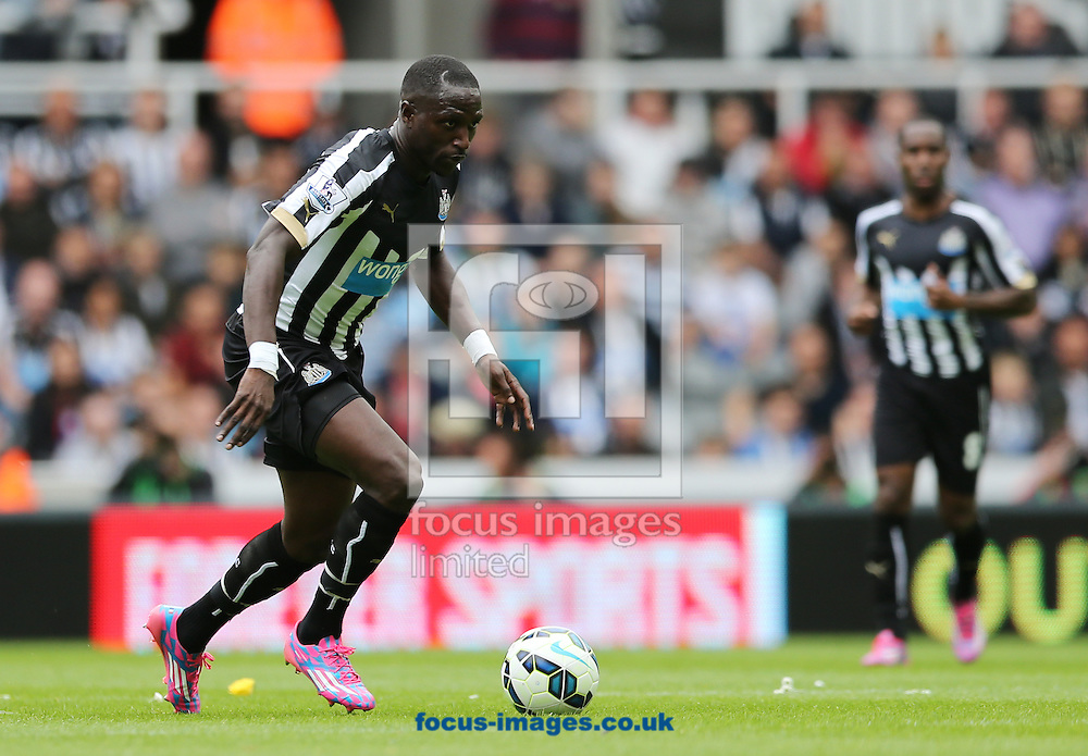 Moussa Sissoko of Newcastle United during the Barclays Premier League match at St. James's Park, Newcastle<br /> Picture by Simon Moore/Focus Images Ltd 07807 671782<br /> 17/08/2014