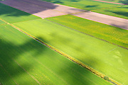Nederland, Drenthe, Gemeente Borger-Odoorn, 27-08-2013; Eerste Exloermond, Noorderboerplaatsen. Veenkoloniaal landschap, aarappelvelden. Peat landscape, potatoe fields (East Netherlands).<br /> luchtfoto (toeslag op standaard tarieven);<br /> aerial photo (additional fee required);<br /> copyright foto/photo Siebe Swart.