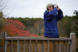 Birdwatching from a viewing platform in a wetland on the Common Pasture in Newburyport, MA. MR