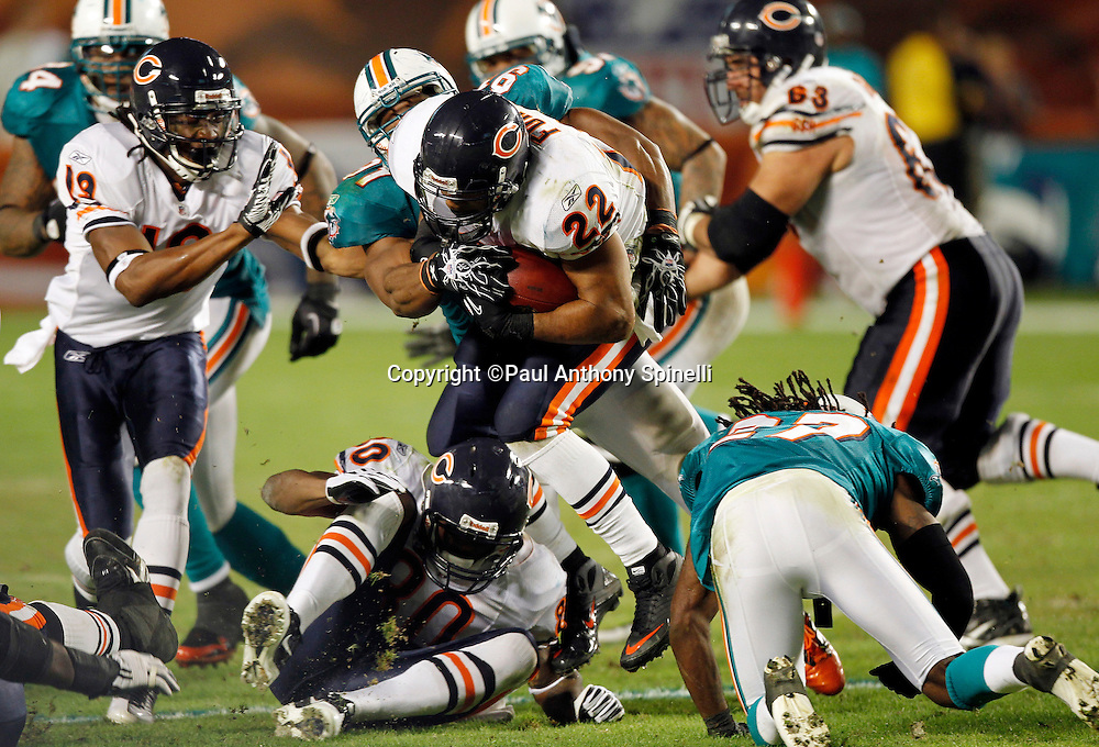 Chicago Bears running back Matt Forte (22) runs the ball on a fourth quarter drive during the NFL week 11 football game against the Miami Dolphins on Thursday, November 18, 2010 in Miami Gardens, Florida. The Bears won the game 16-0. (©Paul Anthony Spinelli)