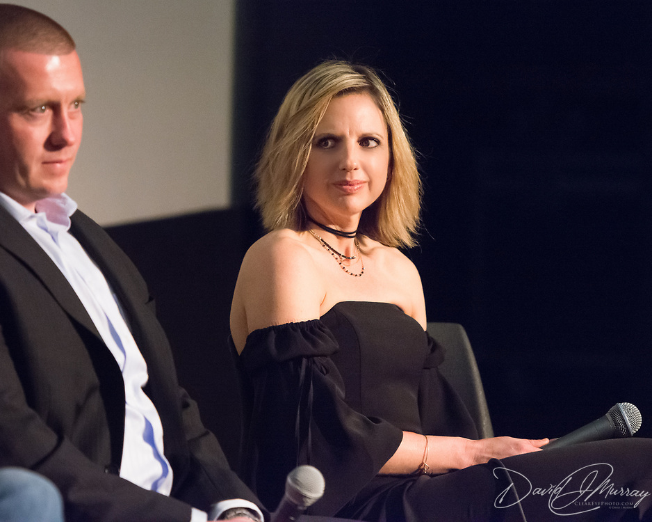 Taken at the opening of the film The Heroin Effect (Michael Venn Director, Karlina Lyons Producer) at The Music Hall in Portsmouth, NH. March 30, 2017