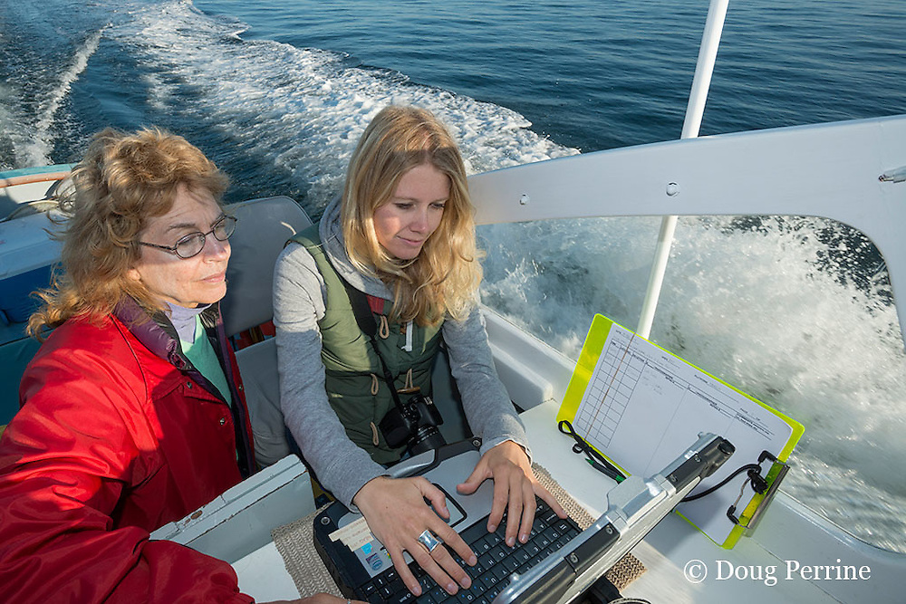 researcher Joy Hampp instructs research intern Johanna Anderson in using the onboard data logging software program aboard the New England Aquarium research vessel Nereid while searching the Bay of Fundy for North Atlantic right whales