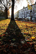 Long shadows on a sunny afternoon in autumn, on a street full of Victorian terraces in Parsons Green
