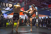 UNITED KINGDOM, London: 02 February 2016 Muay Thai kick boxers perform an exhibition fight for gaming company Golden Race at this years ICE Totally Gaming Convention held at the Excel Arena, East London. The three day event is the world's premier international expo for gaming and gambling professionals. Rick Findler / Story Picture Agency