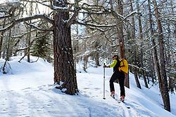 THEMENBILD - Tourengeher im Lärchenwald während einer Skitour zum Kals Matreier Törl. Kals am Großglockner, Österreich am Donnerstag, 8. März 2018 // tourer in the larch forest during a ski tour to the Kals Matreier Toerl. Thursday, March 8, 2018 in Kals am Grossglockner, Austria. EXPA Pictures © 2018, PhotoCredit: EXPA/ Johann Groder
