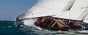 Dorade racing in the Opera House Cup regatta.
