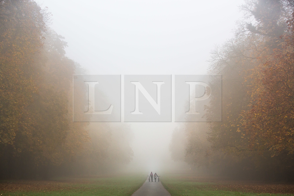 © Licensed to London News Pictures 31/10/2016 Cirencester, UK. Two people walking along an avenue of autumn coloured trees in the morning mist, Cirencester Park,  Gloucestserhire.Credit : Stephen Shepherd/LNP