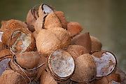 Coonut shells in a pile after the pulp has been scraped out as part of the traditional making coconut milk