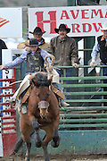 Bronc Riding, Bucking Bronco, Saddle Bronc riding, Bucking Horse,  Salmon, Idaho