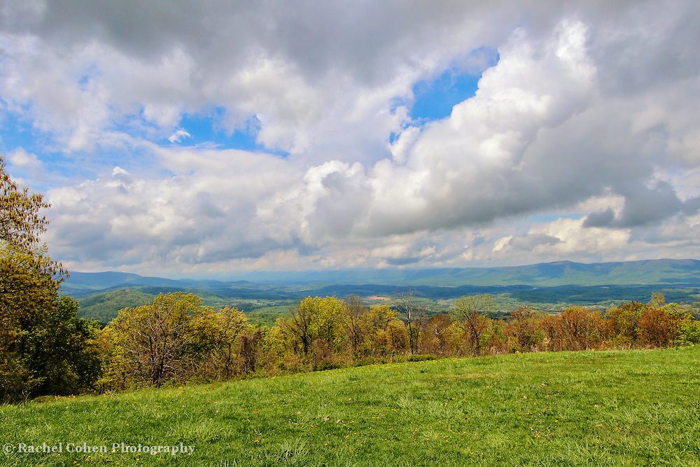 &quot;Spring Again in Shenandoah&quot;<br />