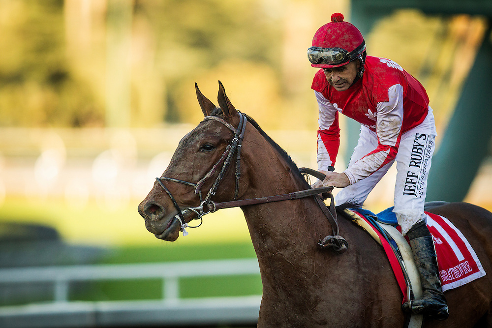 December 26, 2015: Birdatthewire with Mike Smith wins the La Brea Stakes at Santa Anita Park, Arcadia CA. Evers/ESW/CSM