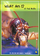 This book features eleven common New Zealand native bush creatures. Children have fun solving the rhyming puzzles and questions to learn about the intriguing lifestyles of: kereru, (wood pigeon), fantail, kiwi, kea, stick insect, weta, puriri moth, koura, (freshwater crayfish), cicada, dragonfly and  gecko. Each section starts with a narrative rhyming poem that gives clues to the animals' identities and ends with the inevitable question, What Am I? Turn the page to reveal which creature. Includes information about the animal in side boxes; details about their life and activities (from the animal's perspective; and several full colour detailed photography for each. Beautifully illustrated with photography.  Paperback, 48 pages. ISBN Number: 9781869486662