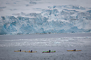 Kayaking off Half Moon Island, home to over 3000 pairs of chinstrap penguins, many with chicks at this time of year, late in the Antarctic summer.