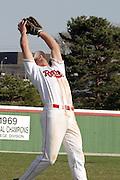 Illinois State Redbird baseball.