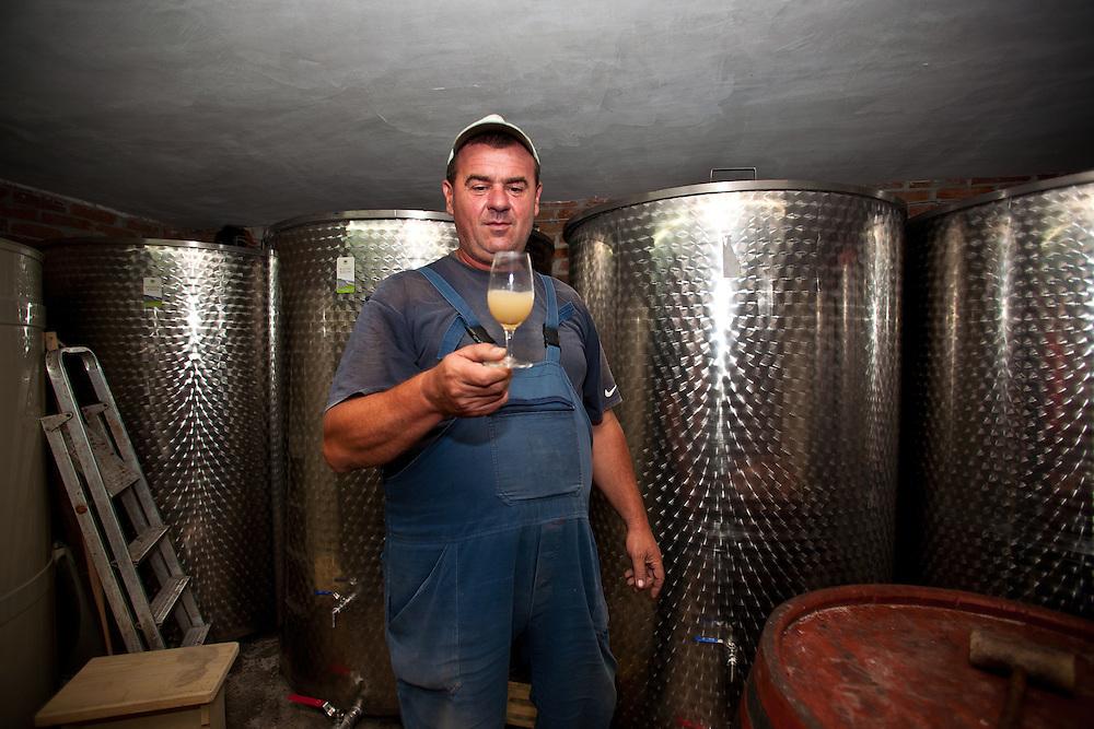 Urosevic Winery, Fruska Gora, Serbia.