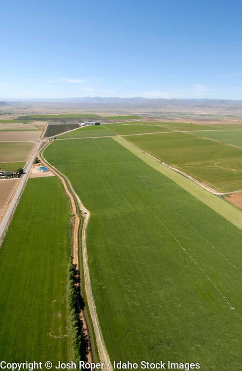 Idaho. Aerial of green fields in summer in Southwestern Idaho.