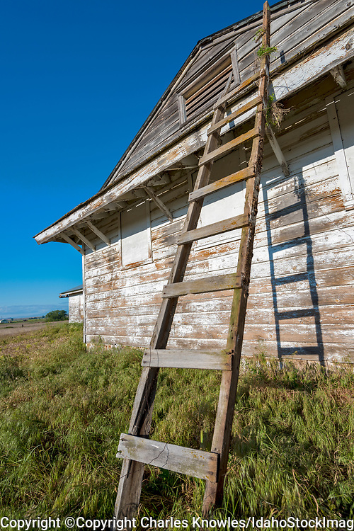 Old country building with peeling paint and ladder.