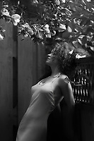 Sensual black and white portrait of a young beautiful woman in a sheer light dress leaning against a garden fence under a blooming camellia tree with fallen flower petals in her curly hair and on her chest
