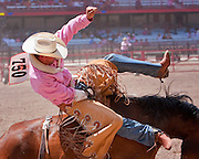Brandon Martin hangs on during the Bareback competition at the 2009 Cheyenne Frontier Days. Brandon shows his support for breast cancer awareness by wearing a pink shirt on the Tough Enough to Wear Pink day.