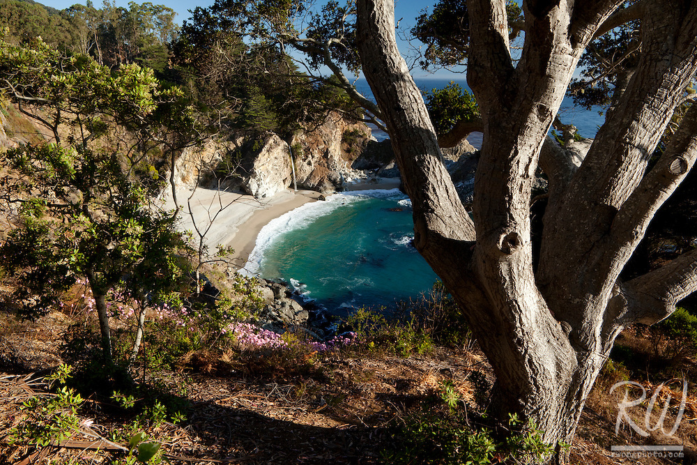 McWay Falls, Julia Pfeiffer Burns SP, California