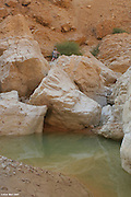 Israel, Judean Desert, a spring and water pool in Wadi Tzeelim