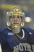 Notre Dame goaltender Mike Johnson during Friday nights game against Lake Superior State in Sault Ste. Marie.