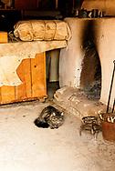 Bents Old Fort National Historic Site, La Junta, Colorado, Indian trade room, cat, Fitzpatrick