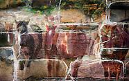 Free Wallpaper's from Craig W. Cutler Fine Art
