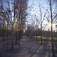 Tulliers gardens Paris France photograph taken with Holga film camera