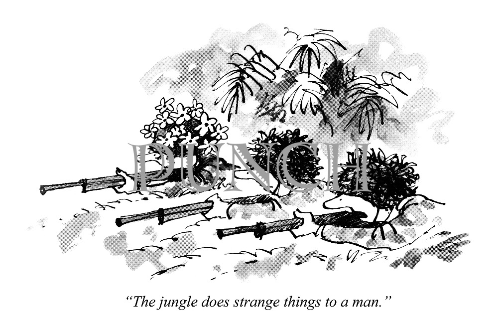 """""""The jungle does strange things to a man."""""""