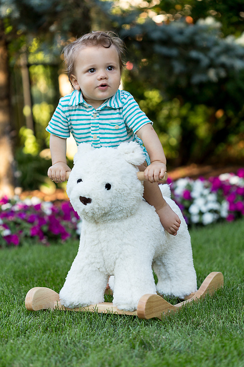 Hobby Horse Bear