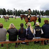 Blair Castle Horse Trials 2012 Photo Essay at Blair Castle, Blair Atholl, Perthshire. Spectators watch the a Ridden Hunter class.  Picture Christian Cooksey.