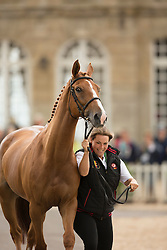 Karin Donckers, (BEL), Lamicell Unique, second horse for Karin Donkers - First Horse Inspection  - Alltech FEI World Equestrian Games™ 2014 - Normandy, France.<br /> © Hippo Foto Team - Dirk Caremans<br /> 25/06/14